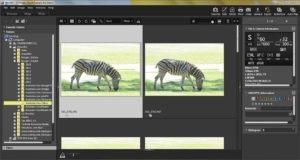 ViewNX-i - Image Management Software